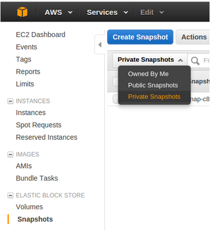 Search for  Shared Snapshot in Private Section