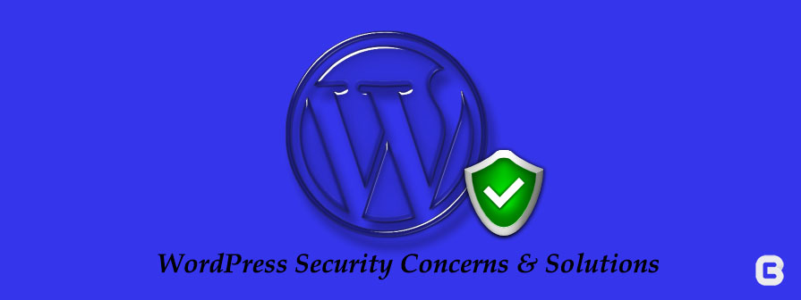 Wordpress Security Concerns and Solutions